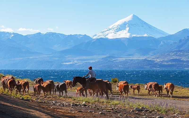quel-itineraire-pour-un-road-trip-en-argentine