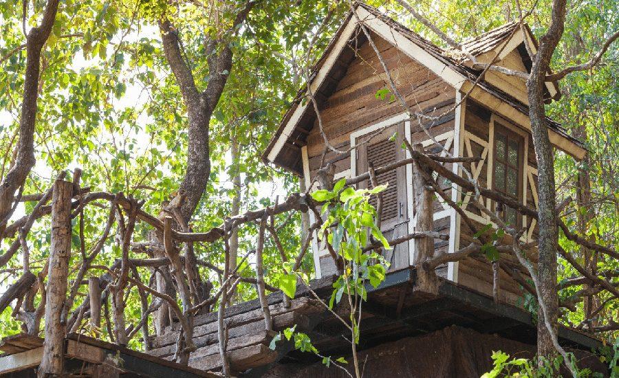 Séjour-cabane-perchée-dans-les-arbres